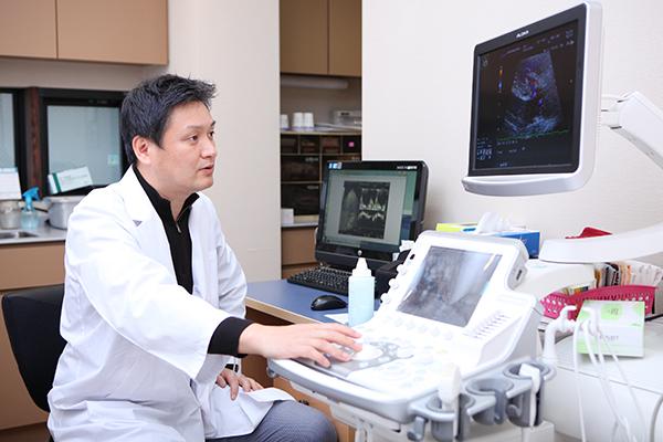 体への負担や痛みが少ない心臓超音波検査&心臓運動負荷試験
