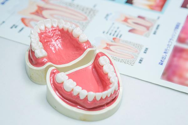 全身の健康に関わる歯周病体のためにしっかり予防と治療を