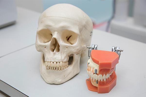 副鼻腔炎から肺炎、がん治療にも医科へも影響、口腔外科の重要性