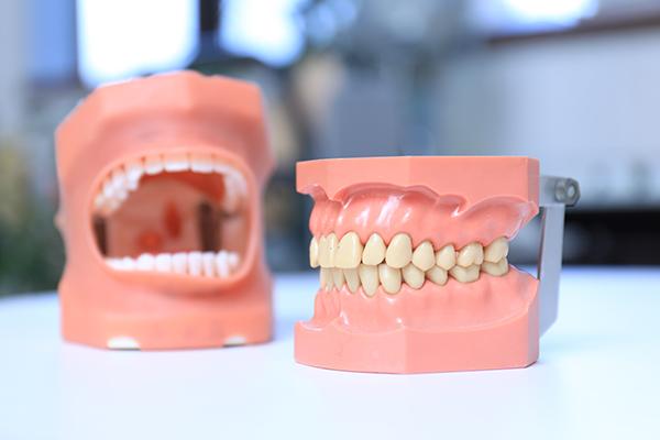 生涯自分の歯で食べることを楽しむ親子で取り組む予防歯科