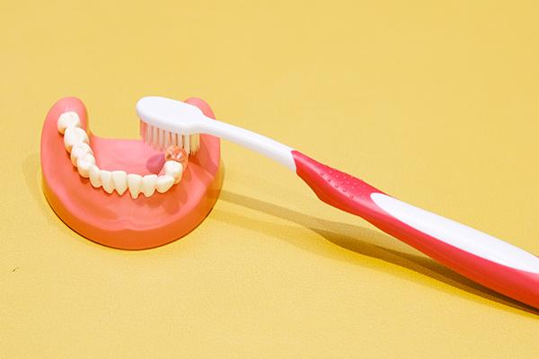 乳歯から虫歯を防ぐために親子で通う予防歯科の重要性とは