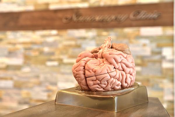 脳内や脳動脈だけに留まらず頸動脈プラークも脳ドックで徹底検査