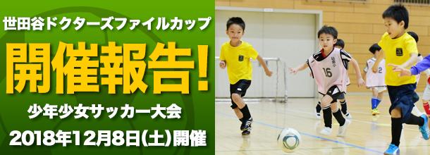 Soccer banner 2019
